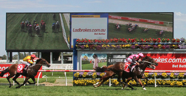 end-of-season-calls-for-celebration-at-caulfield