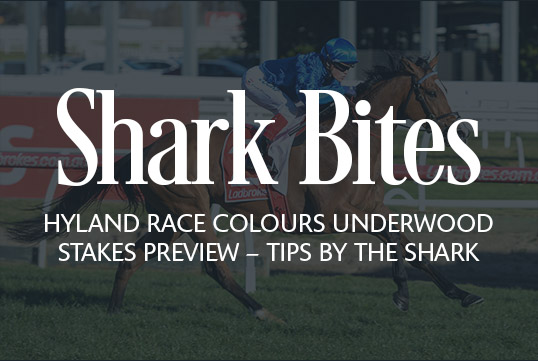 Shark Bites: Hyland Race Colours Underwood Stakes Preview