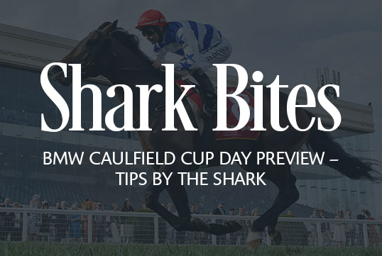 Shark Bites: BMW Caulfield Cup Day Preview