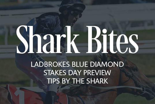 Shark Bites: Ladbrokes Blue Diamond Stakes Day Preview