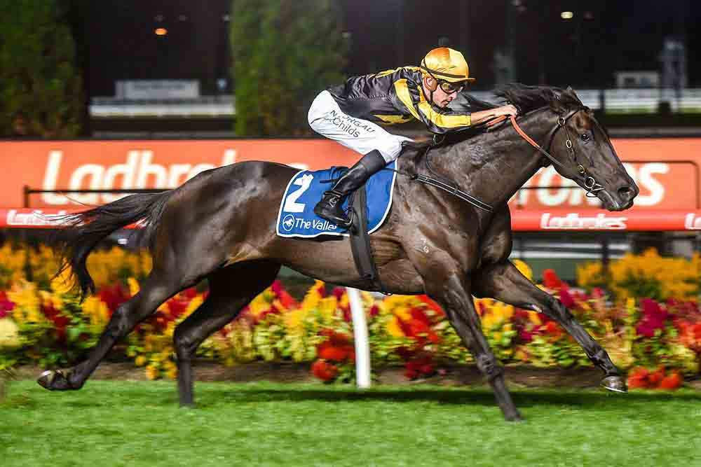Nonconformist ridden by Jordan Childs wins the Alister Clark Stakes at Moonee Valley Racecourse on March 13, 2020 in Moonee Ponds, Australia. (Brett Holburt/Racing Photos)