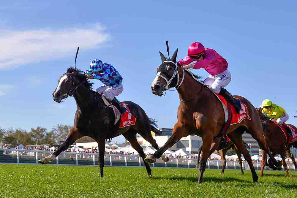 Princess Jenni (NZ) ridden by Damien Oliver wins the Jack Elliott Handicap at Caulfield Racecourse on April 20, 2019 in Caulfield, Australia. (Reg Ryan/Racing Photos)