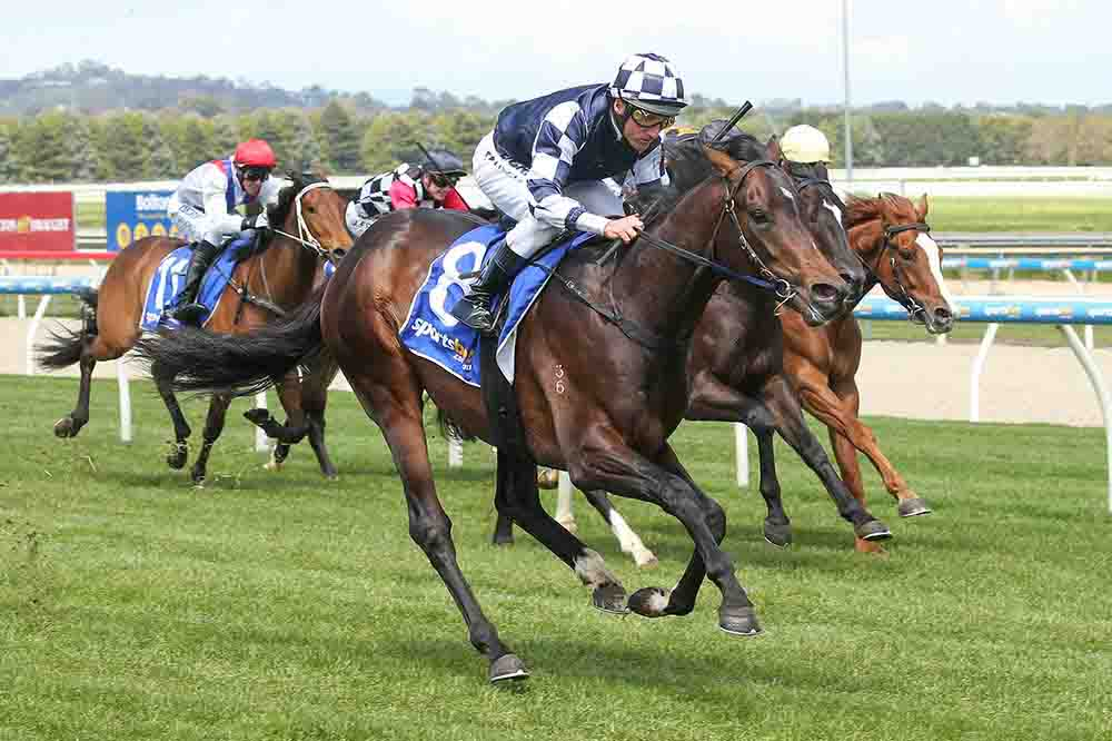 Russian Camelot (IRE) ridden by Damien Oliver wins the Suez 3YO Maiden Plate at Sportsbet-Ballarat Racecourse on October 11, 2019 in Ballarat, Australia. (Pat Scala/Racing Photos)