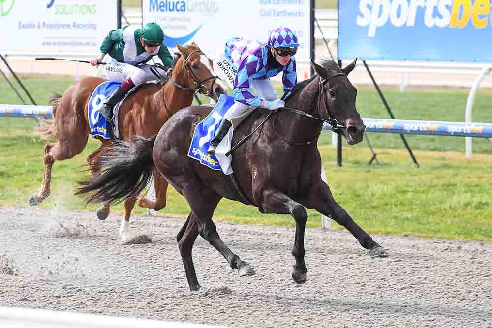 Jenni's Rainbow ridden by Ethan Brown wins the Welcome to SPORTSBET-PAKENHAM 3YO Maiden Plate at Racing.com Park Synthetic Racecourse on August 04, 2020 in Pakenham, Australia. (Pat Scala/Racing Photos)