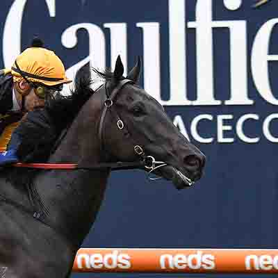 Nonconformist ridden by Jordan Childs wins the John Moule Handicap at Caulfield Racecourse on February 01, 2020 in Caulfield, Australia. (Pat Scala/Racing Photos)